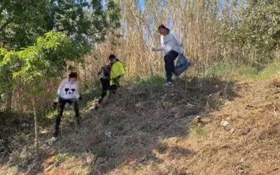 Alumnat de Salesians Mataró fent possible un bosc net