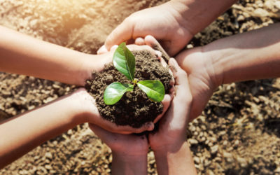 Innovación: Proyecto Colaborativo de Ciencias de la Tierra en Salesianos Cartagena