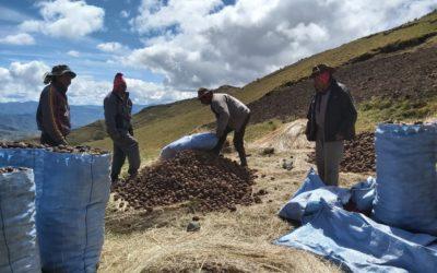 Kami-Bolivia: la importancia de fomentar la soberanía alimentaria